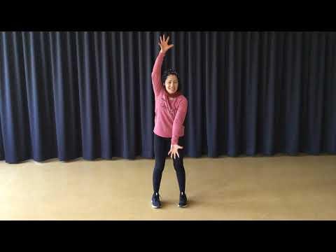 Tanzvideo - animales lento