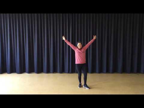 Tanzvideo - animales schnell